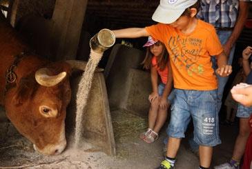 Visites de fermes